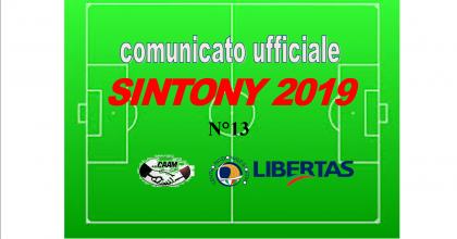 PUBBLICAZIONE COMUNICATO SINTONY 2019 N°13