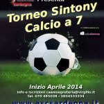 Torneo Sintony Calcio a 7 2014