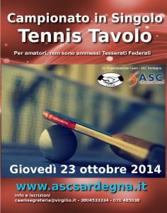 Ping Pong camp Singolo Locandina 2014-15